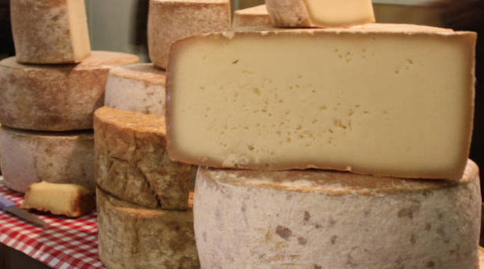 brebis-fromage