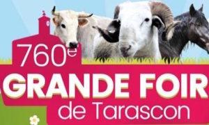foire tarascon ariege 300x180