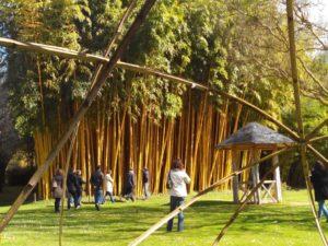 parc bambou 300x225